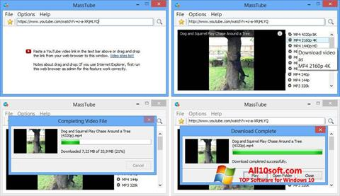 צילום מסך MassTube Windows 10