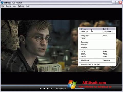 צילום מסך FLV Player Windows 10