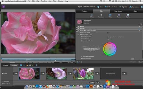 צילום מסך Adobe Premiere Elements Windows 10