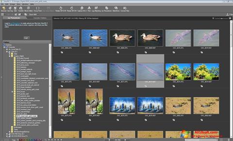 צילום מסך ViewNX Windows 10