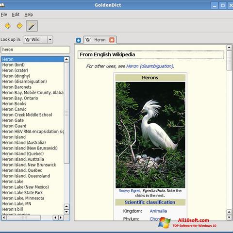 צילום מסך GoldenDict Windows 10